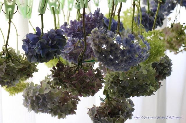 紫陽花 ドライフラワー