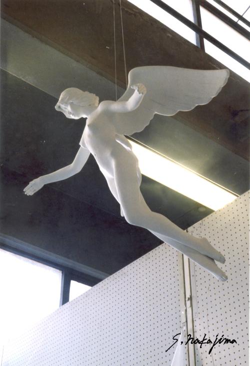 天使5-2