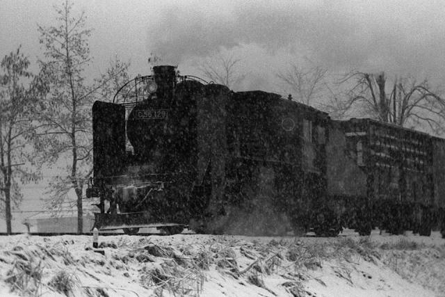 雪の中を走るC56 129 川治付近にて '72年