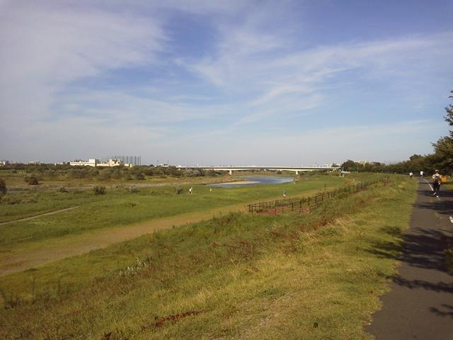 稲城の多摩川