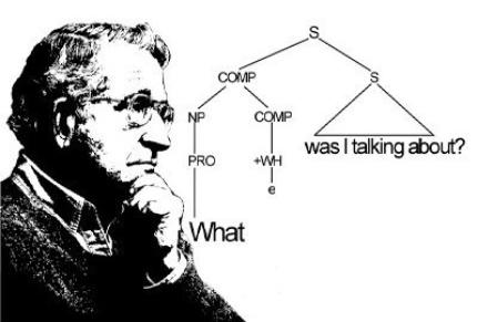 Chomsky-crop.jpg