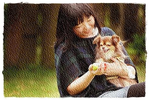 愛犬撮影会4