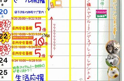 快適いぬ生活カレンダー