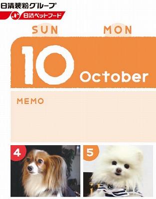 日清カレンダー2