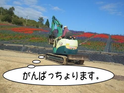 7_201410080212239d9.jpg