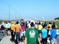 アクアラインマラソン1