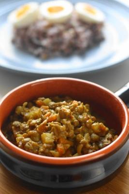 レンズ豆のヘルシースパイシーカレー2