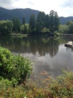 金鱗湖2_