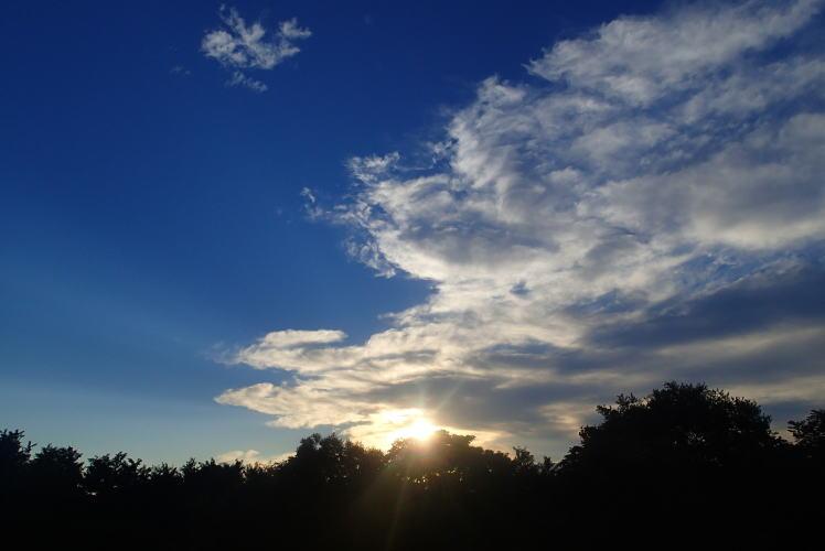 2014-0920-011.jpg