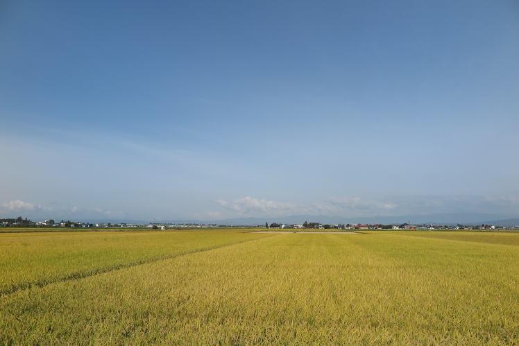 2014-0930-001.jpg