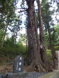 高倉城址6(現鹿島神社)