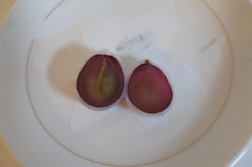 ひとつぶのピオーネ 内臓