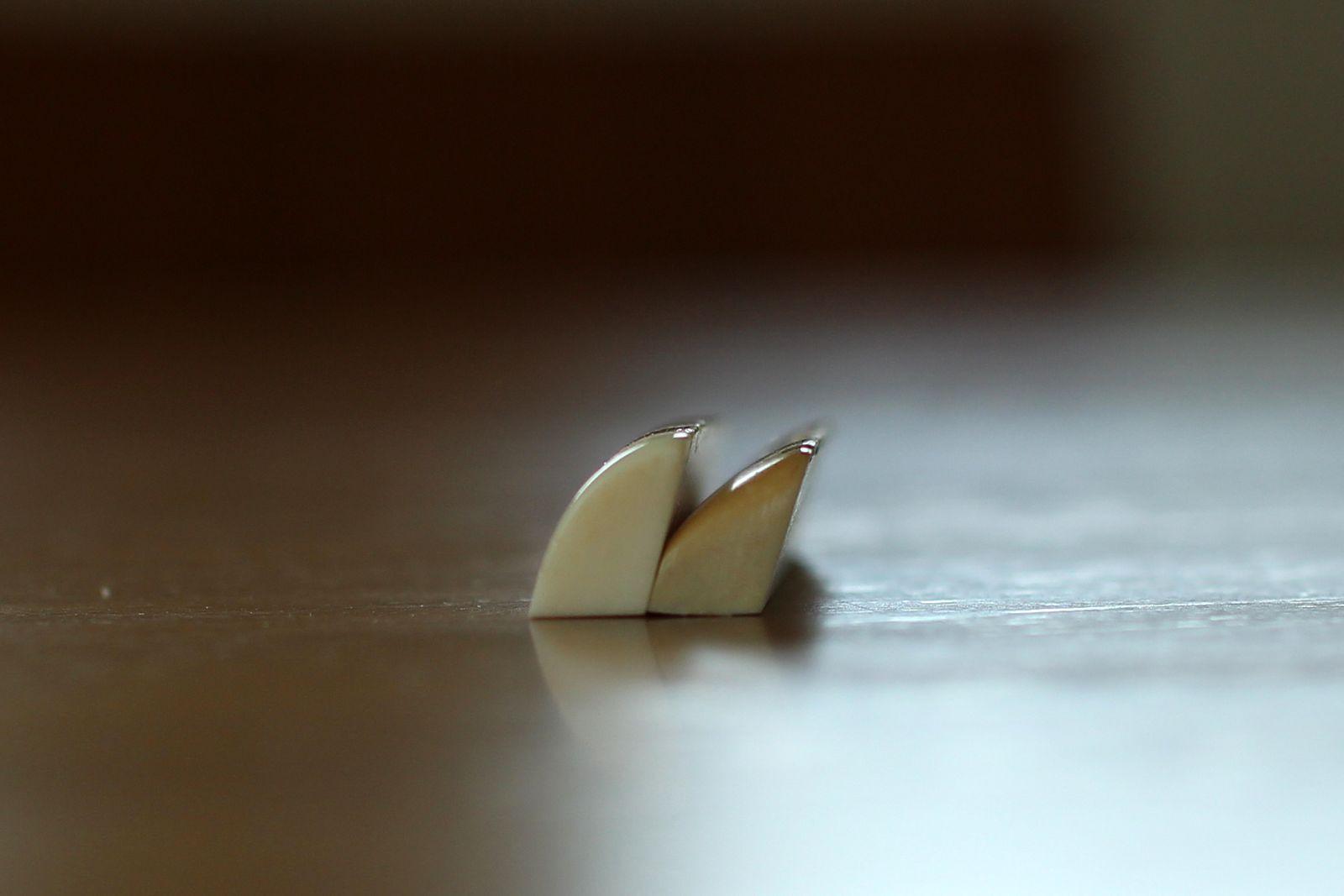 14nut (4)