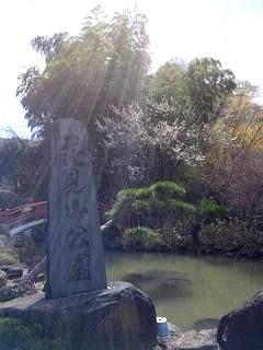 20140405花見山(その8)