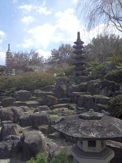 20140405花見山(その9)