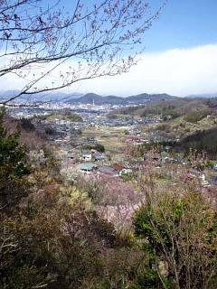 20140405花見山(その25)