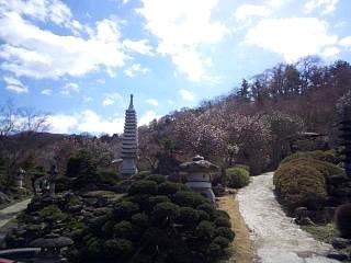 20140405花見山(その48)