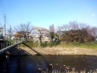 20140412逢瀬川(その1)