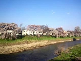 20140412逢瀬川(その4)