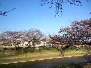 20140412逢瀬川(その16)