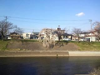 20140412逢瀬川(その21)