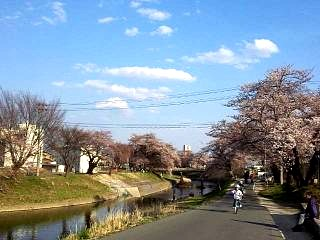 20140413逢瀬川(その3)