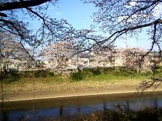 20140413逢瀬川(その13)
