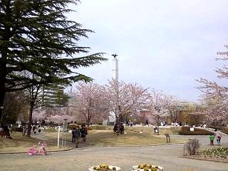 20140420開成山公園(その1)