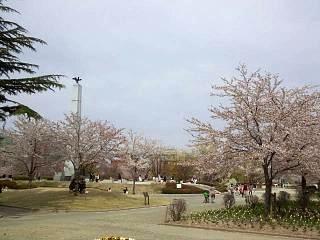 20140420開成山公園(その2)