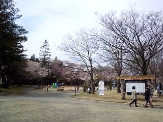 20140420開成山公園(その3)