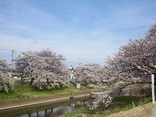 20140420逢瀬川(その8)
