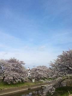 20140420逢瀬川(その9)