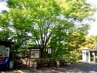 20140427わら家(その1)