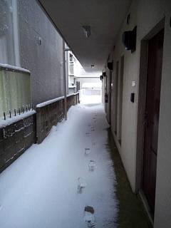20140214積雪(その1)