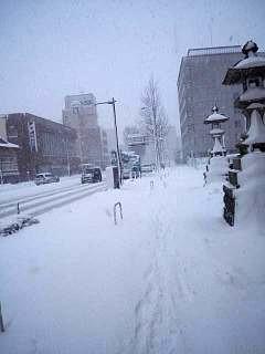 20140214積雪(その5)