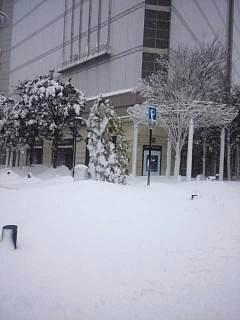 20140214積雪(その11)