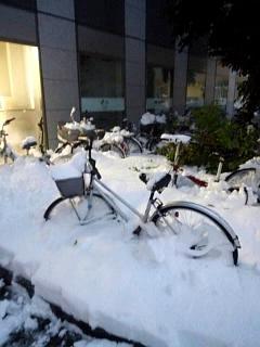 20140214積雪(その16)