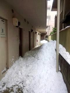20140216雪崩の日(その3)