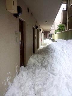 20140216雪崩の日(その4)