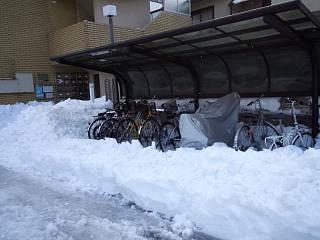 20140216雪崩の日(その9)