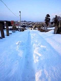 20140216雪崩の日(その13)
