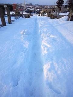 20140216雪崩の日(その14)