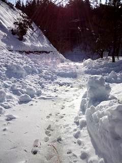 20140217雪景色(その3)