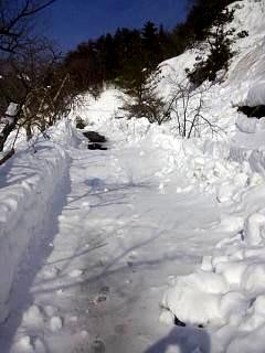 20140217雪景色(その4)