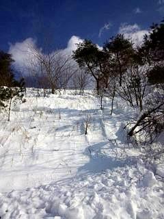 20140217雪景色(その5)