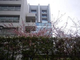 20140301芝浦散歩(その1)