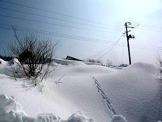 20140220雪景色(その1)