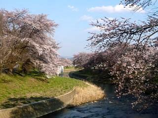 20140413逢瀬川(その32)