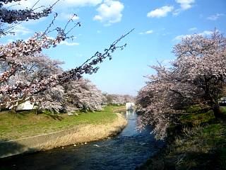 20140413逢瀬川(その34)