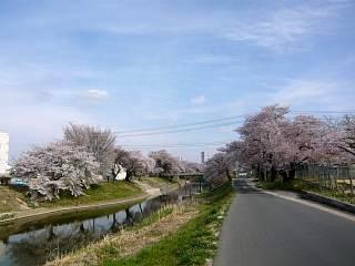 20140420逢瀬川(その5)